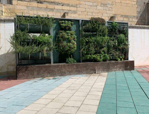 Playful Greenery coming to Gzira Primary School